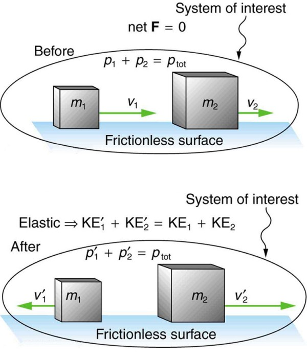 Elastic Collisions In One Dimension Physics