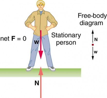 The first condition for equilibrium physics in the figure a stationary man is standing on the ground his feet are ccuart Gallery