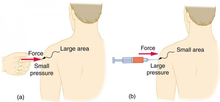 In figure a, the person is poked with a finger exerting a small pressure due to the large area of contact and, in b, he is poked with a syringe exerting a large pressure due to the small area of contact.