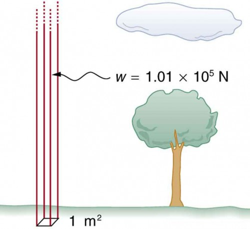 Figure shows a column of air exerting a weight of one point zero one times ten to the power five newtons on a rectangular patch of ground of one square meter cross section.