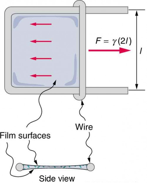 Sliding wire device which is used to measure surface tension shows the force exerted on the two surfaces of the liquid. This force remains a constant until the film's breaking point.