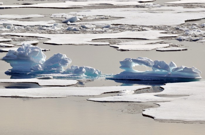 Photograph of melting ice floes in the Arctic.