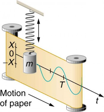 all about vertical motion essay Physics questions to challenge  a gyroscope wheel is spinning at a constant angular velocity w s while precessing about a vertical axis at  the motion is.