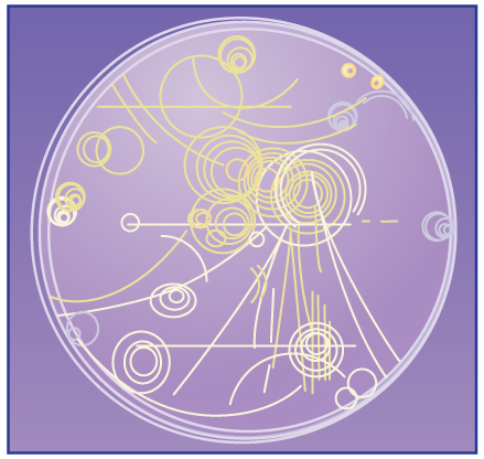 A drawing representing trails of bubbles in a bubble chamber.
