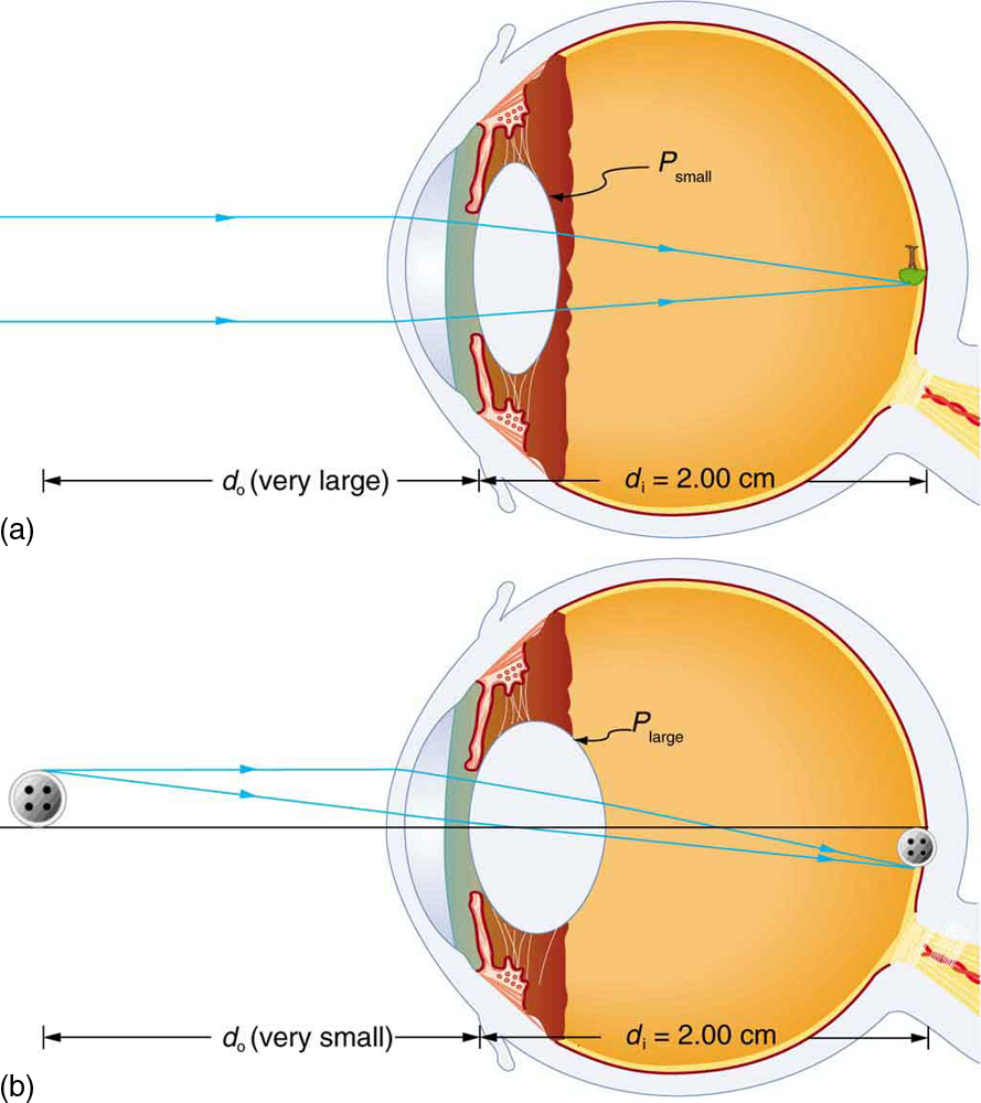 Physics Of The Eye Physics