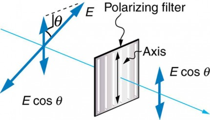 This schematic is another variation of the schematic first introduced two figures prior. To the left of the vertically oriented polarizing filter is a double headed blue arrow oriented in the plane perpendicular to the propagation direction and at an angle theta with the vertical. After the polarizing filter a smaller vertical double headed arrow appears, which is labeled E cosine theta.