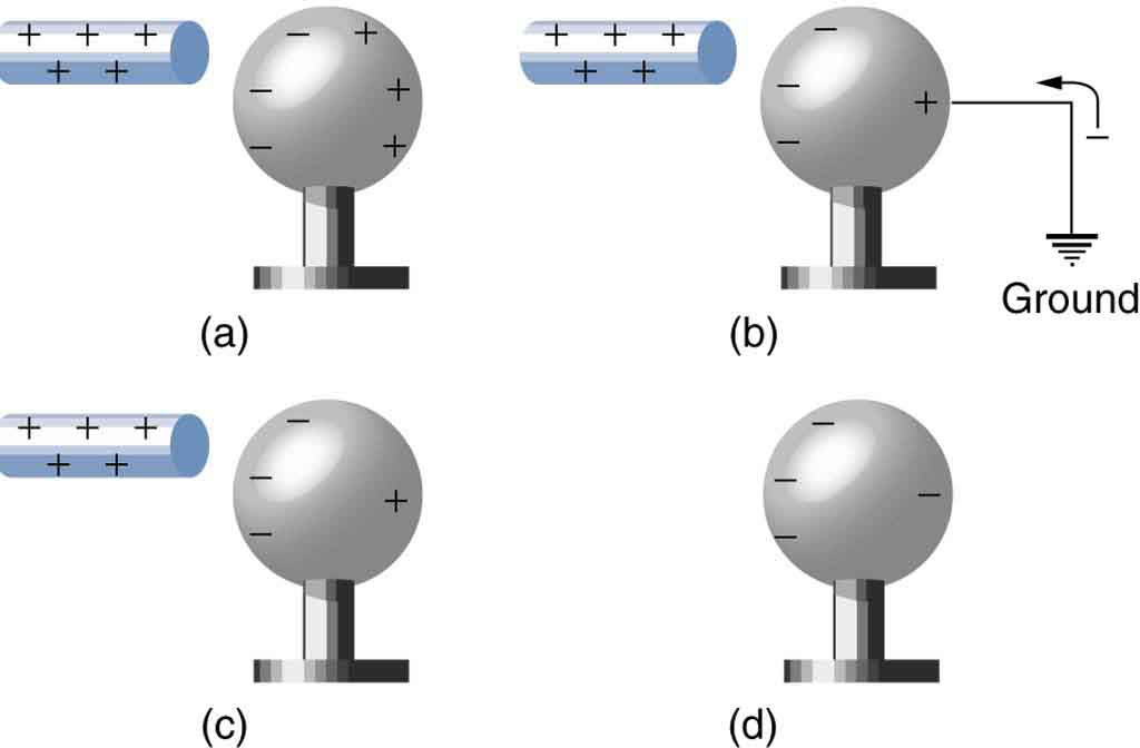 In part a, a rod with positive sign is brought near a neutral metal sphere. One surface toward the rod has negative signs and the other surface has positive signs. In part b, a rod with positive sign is close to one surface of the sphere having negative signs and the other surface has low number of positive signs and a wire is attached to that face which is connected to the ground. In part c, a rod with positive sign is close to one surface of the sphere having negative signs and the other surface has low number of positive signs. In part d, the positive rod is absent, and the sphere has negative signs on it.