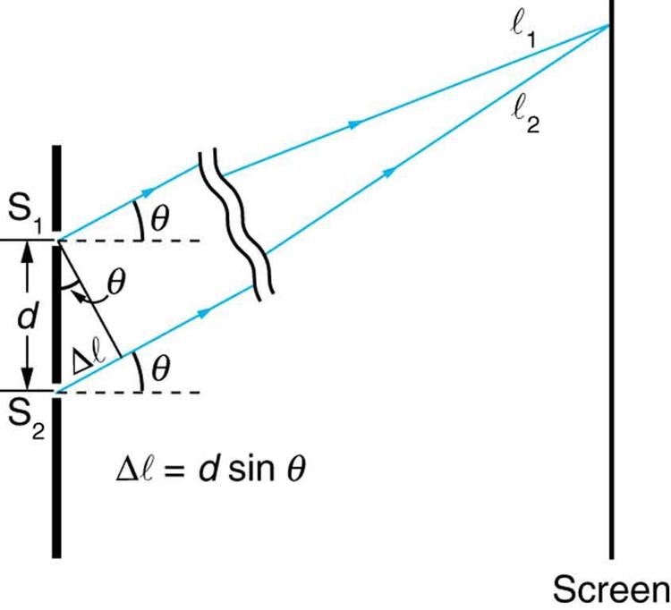 A figura é um esquema de uma experiência de fenda dupla, com a escala das fendas ampliada para mostrar o detalhe. As duas fendas estão à esquerda, e o ecrã está à direita. As fendas são representadas por uma linha vertical espessa com duas fendas cortadas a uma distância d distante. Dois raios, um de cada fenda, ângulo para cima e para a direita, num ângulo teta acima da horizontal. No ecrã, estes raios são mostrados para convergir num ponto comum. O raio da fenda superior é rotulado l sub um, e o raio da fenda inferior é rotulado l sub dois. Nas fendas, é desenhado um triângulo direito, com a linha grossa entre as fendas formando a hipotenusa. A hipotenusa é rotulada de d, que é a distância entre as fendas. Um pedaço curto do raio da fenda inferior é rotulado delta l e forma o lado curto do triângulo direito. O lado longo do triângulo direito é formado por um segmento de linha que vai para baixo e para a direita desde a fenda superior até ao raio inferior. Este segmento de linha é perpendicular ao raio inferior, e o ângulo que faz com a hipotenusa é rotulado de teta. Por baixo deste triângulo está a fórmula delta l igual a d sine theta.