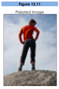 Figure 13.11, Pixelated image. A very blurry and pixelated picture of a person with hands on hips.