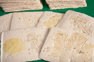 Handmade paper with leaves