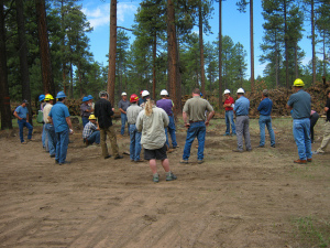 People Wearing Hardhats in Woods