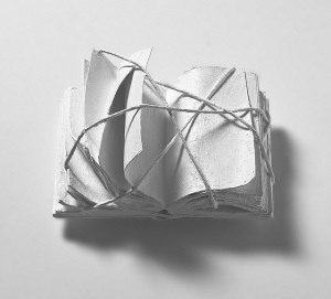 Constraint Sculpture of White Book