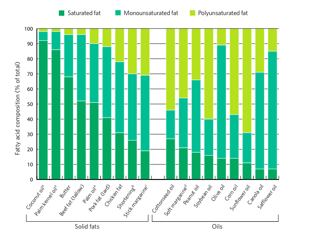 Bar Graph showing compositions of various fatty acid sources