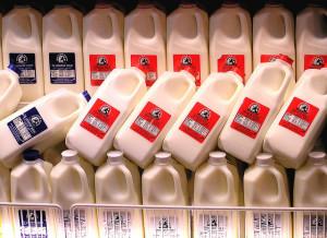 Rows of milk cartons