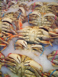 Crabs on ice in a market