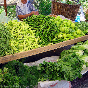 Farm stand with only green vegetables