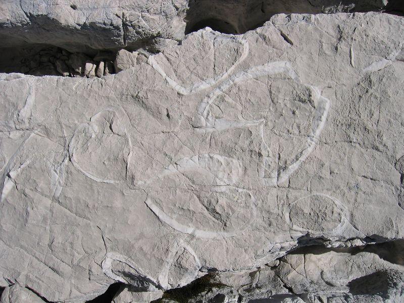 Pedra calcária, uma pedra cinzenta