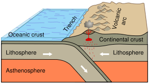 Subduction of an oceanic plate beneath a continental plate causes earthquakes and forms a line of volcanoes known as a continental arc.
