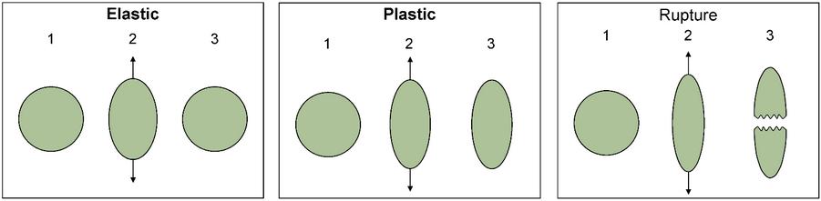 Diagrama de Elastic, Plastic e Rupture.  Em Elastic, o material é esticado um pouco e retorna ao normal.  O plástico é o mesmo, mas o material pode esticar ainda mais.  Em Ruptura, o material é esticado demais e quebra, permanecendo sua forma esticada