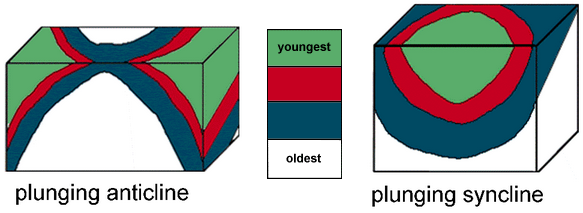 Diagrams of a plunging anticline and syncline.