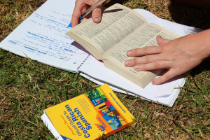 Person reading Spanish book with notebook and Spanish dictionary