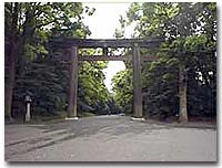 Torii at Meiji Jingû shrine