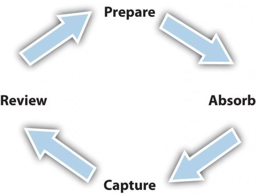 The Learning Cycle: Prepare, Absorb, Capture, Review