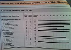 Printout of Grade 7 Standardized Test Results