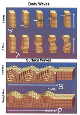 A seismic wave is an elastic wave generated by an impulse such as an earthquake or an explosion. Seismic waves may travel either along or near the earth's surface (Rayleigh and Love waves) or through the earth's interior (P and S waves).
