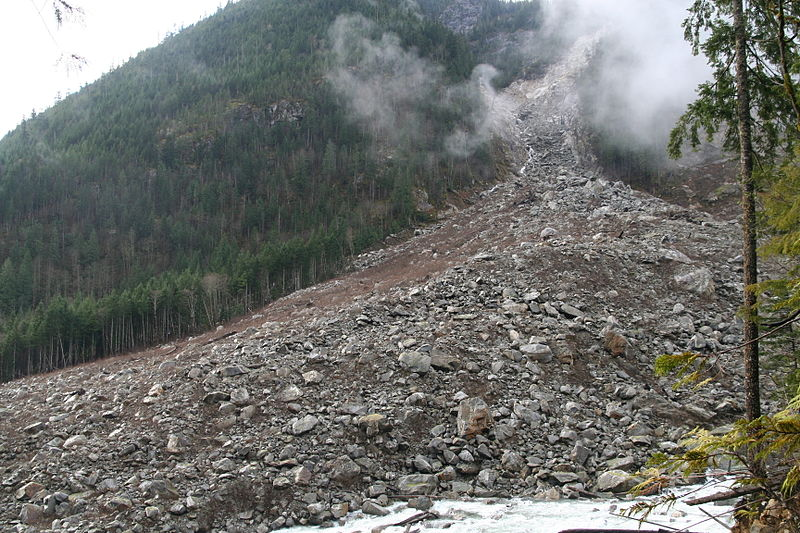 a vast amount of rocks have slide down a mountain side, plowing through tress to the ground.