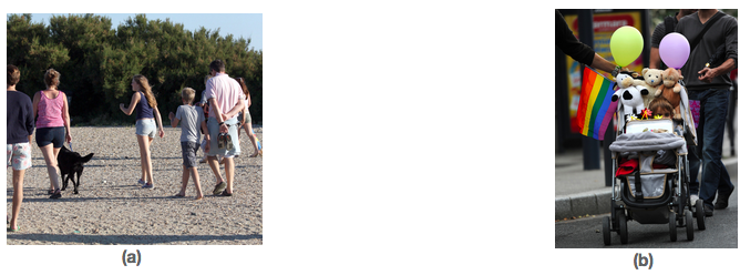 Photo (a) shows a family walking with a dog on a beach. (b) shows a child in a stroller being pushed by two men.