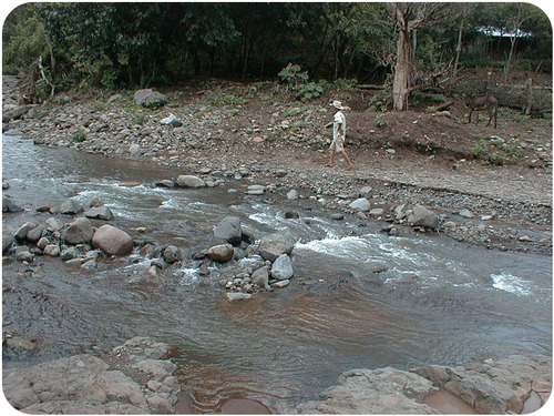 Figure 12. A river dumps sediments along its bed and on its banks.