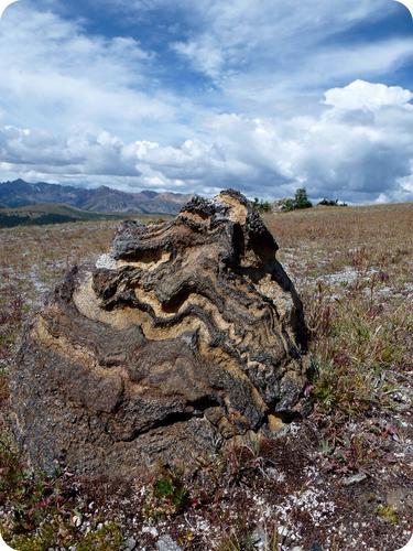 Figure 17. A foliated metamorphic rock.