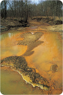 Water in a stream has been discolored (a bright orange and yellow) due to acid drainage.