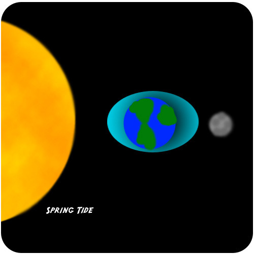 The Sun and the Earth-Moon System | Earth Science