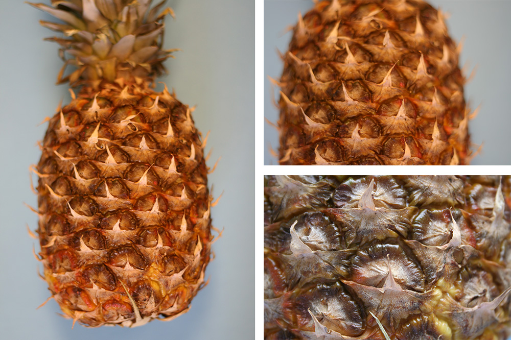 Three views of a pineapple; the view get closer to the fruit.