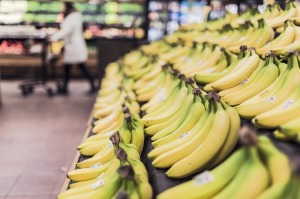 Rows of bananas in a grocery store