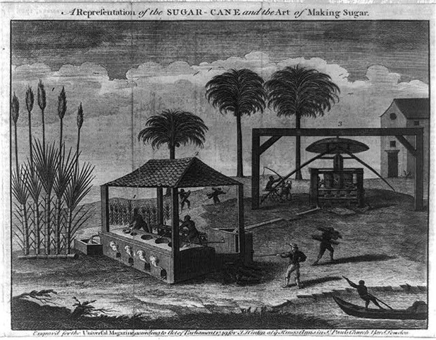 Slaves using machines on a plantation to produce sugar.