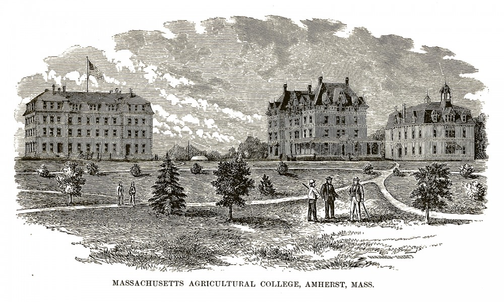 A few people standing on the grounds of Massachusetts Agricultural College.