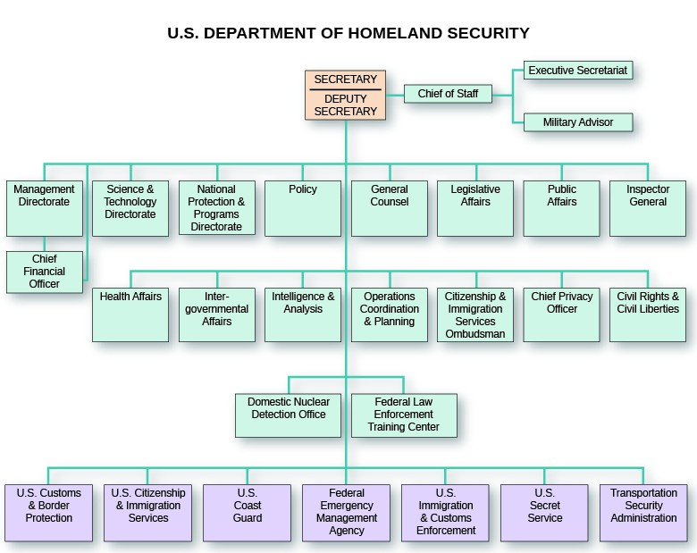 An organizational chart shows the structure of the U.S. Department of Homeland Security. The Secretary and Deputy Secretary are at the top; the Chief of Staff branches from them, and the Executive Secretariat and Military Advisor branch from the Chief of Staff. The second level includes the Management Directorate, from which the Chief Financial Officer branches; the Science and Technology Directorate; the National Protection and Programs Directorate; Policy; General Counsel; Legislative Affairs; Public Affairs; and Inspector General. The third level includes Health Affairs; Intergovernmental Affairs; Intelligence and Analysis; Operations Coordination and Planning; Citizenship and Immigration Services Ombudsman; Chief Privacy Officer; and Civil Rights and Civil Liberties. The fourth level includes the Domestic Nuclear Detection Office and the Federal Law Enforcement Training Center. The fifth level includes U.S. Customs and Border Protection; U.S. Citizenship and Immigration Services; the U.S. Coast Guard; the Federal Emergency Management Agency; U.S. Immigration and Customs Enforcement; the U.S. Secret Service; and the Transportation Security Administration.