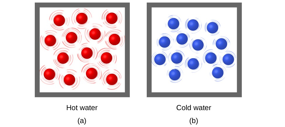 """Two molecular drawings are shown and labeled a and b. Drawing a is a box containing fourteen red spheres that are surrounded by lines indicating that the particles are moving rapidly. This drawing has a label that reads """"Hot water."""" Drawing b depicts another box of equal size that also contains fourteen spheres, but these are blue. They are all surrounded by smaller lines that depict some particle motion, but not as much as in drawing a. This drawing has a label that reads """"Cold water."""""""