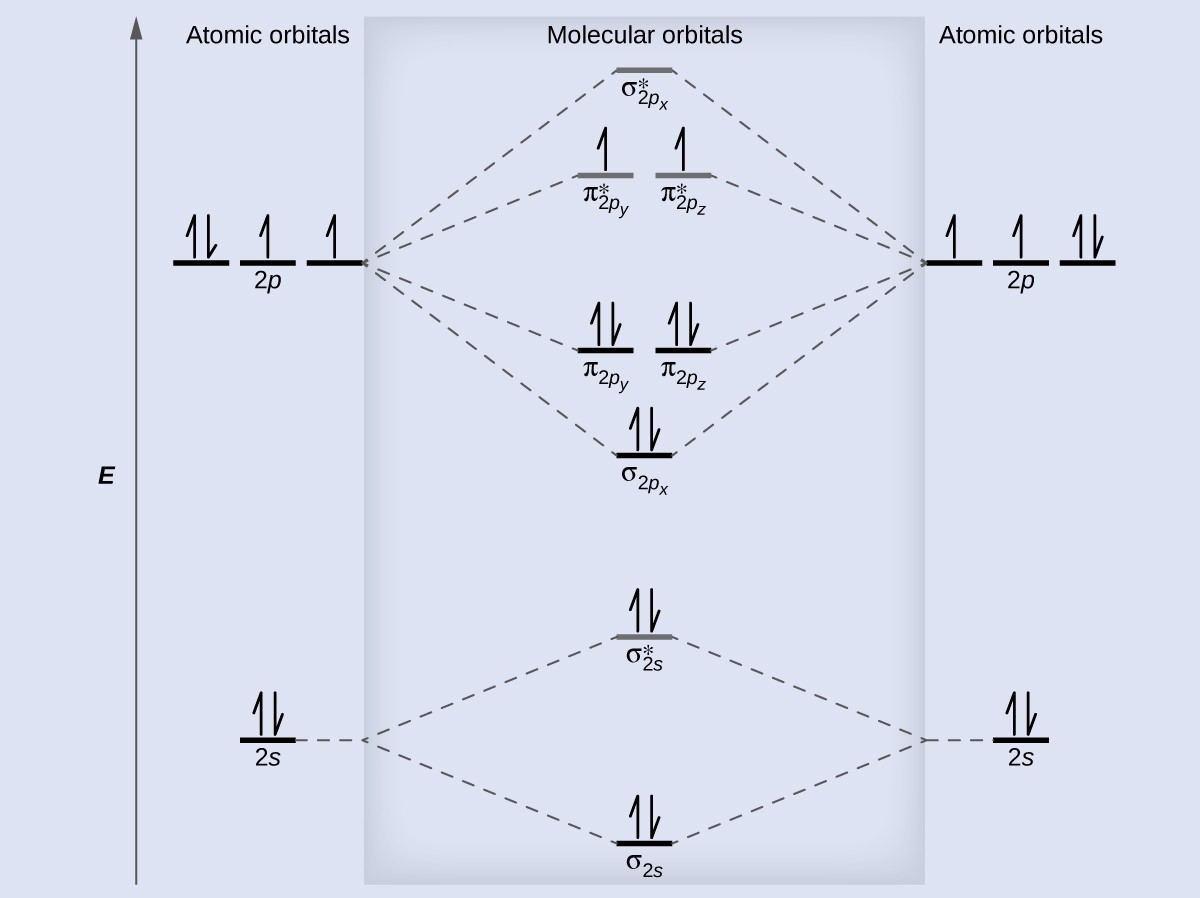 Molecular orbital theory chemistry for majors a diagram is shown that has an upward facing vertical arrow running along the left pooptronica Images