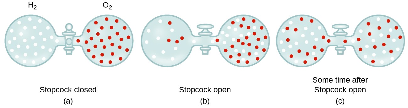 """In this figure, three pairs of gas filled spheres or vessels are shown connected with a stopcock between them. In a, the figure is labeled, """"Stopcock closed."""" Above, the left sphere is labeled, """"H subscript 2."""" It contains approximately 30 small, white, evenly distributed circles. The sphere to its right is labeled, """"O subscript 2."""" It contains approximately 30 small red evenly distributed circles. In b, the figure is labeled, """"Stopcock open."""" The stopcock valve handle is now parallel to the tube connecting the two spheres. On the left, approximately 9 small, white circles and 4 small, red circles are present, with the red spheres appearing slightly closer to the stopcock. On the right side, approximately 25 small, red spheres and 21 small, white spheres are present, with the concentration of white spheres slightly greater near the stopcock. In c, the figure is labeled """"Some time after Stopcock open."""" In this situation, the red and white spheres appear evenly mixed and uniformly distributed throughout both spheres."""