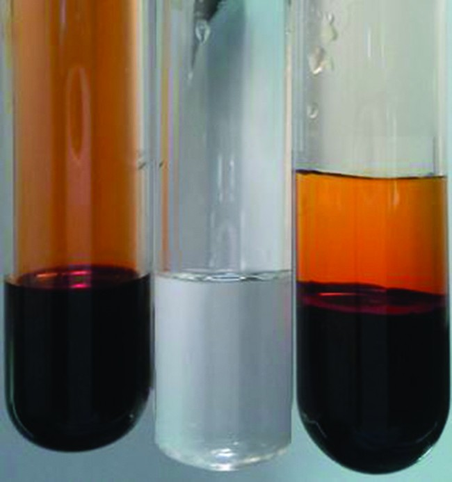 This figure shows three test tubes. The first test tube holds a dark orange-brown substance. The second test tube holds a clear substance. The amount of substance in both test tubes is the same. The third test tube holds a dark orange-brown substance on the bottom with a lighter orange substance on top. The amount of substance in the third test tube is almost double of the first two.