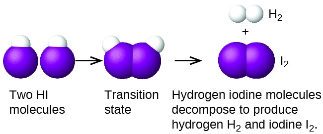 """This figure provides an illustration of a reaction between two H I molecules using space filling models. H atoms are shown as white spheres, and I atoms are shown as purple spheres. On the left, two H I molecules are shownwith a small white sphere bonded to a much larger purple sphere. The label, """"Two H I molecules,"""" appears below. An arrow points right to a similar structure in which the two molecules appear pushed together, so that the purple spheres of the two molecules are touching. Below appears the label, """"Transition state."""" Following another arrow, two white spheres are shown vertically oriented and bonded together with the label, """"H subscript 2"""" above. The H subscript 2 molecule is followed by a plus sign and two purple spheres bonded together with the label, """"I subscript 2"""" above. Below these structures is the label, """"Hydrogen iodide molecules decompose to produce hydrogen H subscript 2 and iodine I subscript 2."""""""
