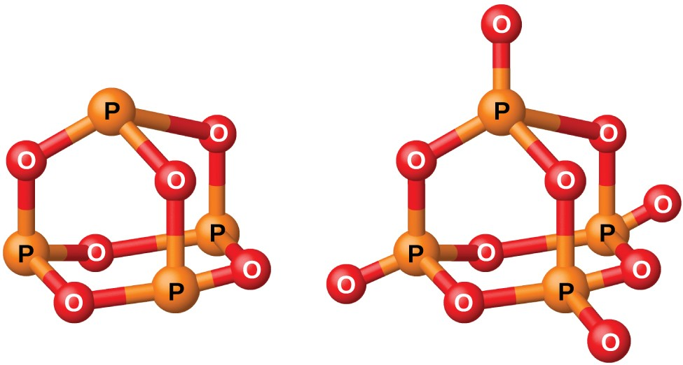 "Two ball-and-stick models are shown. In the left model, three orange atoms labeled, ""P,"" are single bonded to red atoms labeled, ""O,"" in an alternating, six-sided ring structure. Each of the orange atoms are also single bonded to another red atom, which are in turn single bonded to a single orange atom. The right model shows three orange atoms labeled, ""P,"" single bonded to red atoms labeled, ""O,"" in an alternating, six-sided ring structure. Each of the orange atoms are also single bonded to two more red atoms, one in an upward position and one facing the outside of the molecule. The upward red atoms are single bonded to a single orange atom which is single bonded to a final red atom."