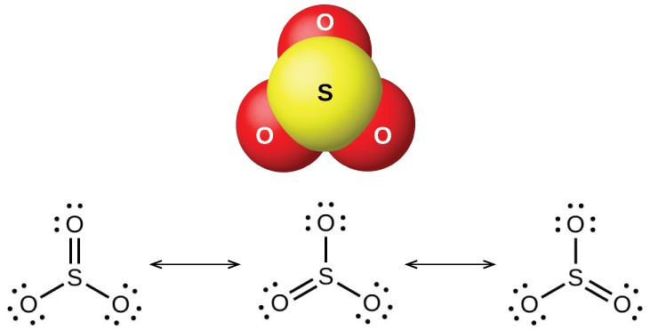 "A ball-and-stick model shows a yellow atom labeled, ""S,"" bonded to three red atoms labeled, ""O."" Three Lewis structures are shown connected by double-headed arrows. The left Lewis structure shows a sulfur atom single bonded on the lower left and right to oxygen atoms with three lone pairs of electrons each. The sulfur atom is also double bonded above to an oxygen atom with two lone pairs of electrons. The middle and right Lewis structures are the same as the left, but show the double bonded oxygen in the lower left and lower right positions, respectively."