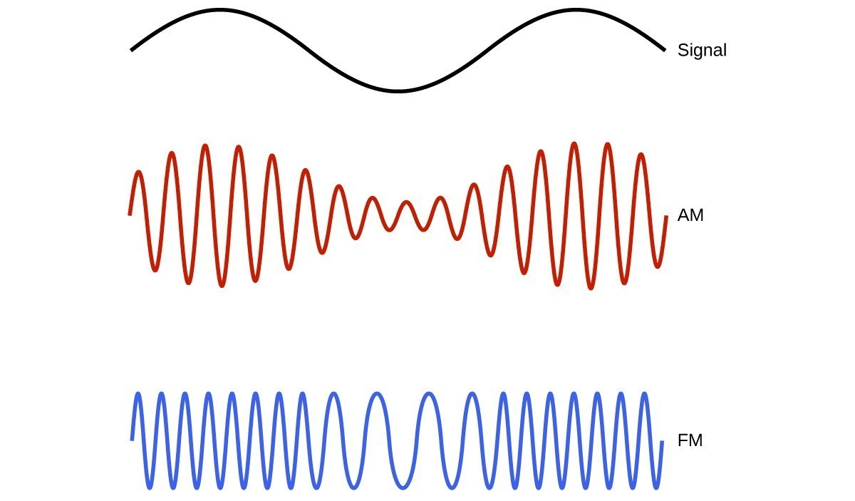 "This figure shows 3 wave diagrams. The first wave diagram is in black and shows two crests, indicates a consistent distance from peak to trough, and has one trough in its span across the page. The label, ""Signal,"" appears to the right. Just below this, a wave diagram is shown in red. The wave includes sixteen crests, but the distance from the peaks to troughs of consecutive waves varies moving across the page. The peak to trough distance is greatest in the region below the peaks of the black wave diagram, and the distance from peak to trough is similarly least below the trough of the black wave diagram. This red wave diagram is labeled, ""A M."" The third wave diagram is shown in blue. The distance from peak to trough of consecutive waves is constant across the page, but the peaks and troughs are more closely packed in the region below the peaks of the black wave diagram at the top of the figure. The peaks and troughs are relatively widely spaced below the trough region of the black wave diagram. This blue wave diagram is labeled ""F M."""