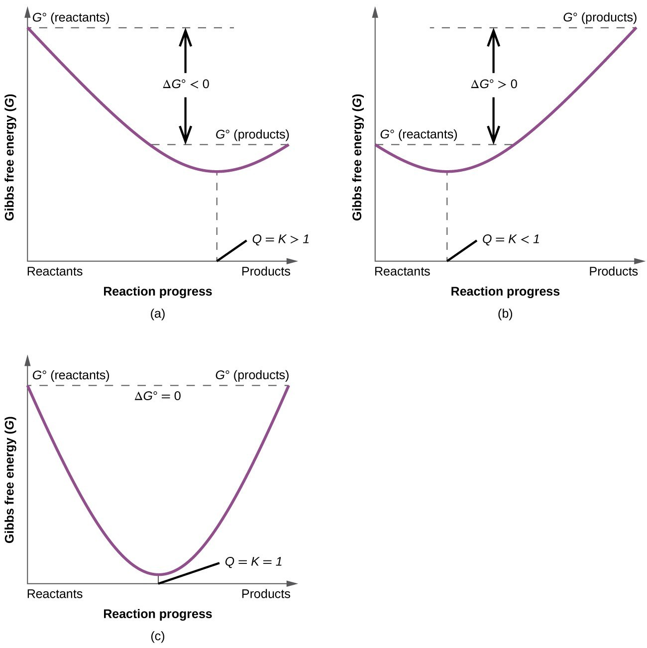 "Three graphs, labeled, ""a,"" ""b,"" and ""c"" are shown where the y-axis is labeled, ""Gibbs free energy ( G ),"" and, ""G superscript degree sign ( reactants ),"" while the x-axis is labeled, ""Reaction progress,"" and ""Reactants,"" on the left and, ""Products,"" on the right. In graph a, a line begins at the upper left side and goes steadily down to a point about halfway up the y-axis and two thirds of the way on the x-axis, then rises again to a point labeled, ""G superscript degree sign ( products ),"" that is slightly higher than halfway up the y-axis. The distance between the beginning and ending points of the graph is labeled as, ""delta G less than 0,"" while the lowest point on the graph is labeled, ""Q equals K greater than 1."" In graph b, a line begins at the middle left side and goes steadily down to a point about two fifths up the y-axis and one third of the way on the x-axis, then rises again to a point labeled, ""G superscript degree sign ( products ),"" that is near the top of the y-axis. The distance between the beginning and ending points of the graph is labeled as, ""delta G greater than 0,"" while the lowest point on the graph is labeled, ""Q equals K less than 1."" In graph c, a line begins at the upper left side and goes steadily down to a point near the bottom of the y-axis and half way on the x-axis, then rises again to a point labeled, ""G superscript degree sign ( products ),"" that is equal to the starting point on the y-axis which is labeled, ""G superscript degree sign ( reactants )."" The lowest point on the graph is labeled, ""Q equals K equals 1."" At the top of the graph is the label, ""Delta G superscript degree sign equals 0."""