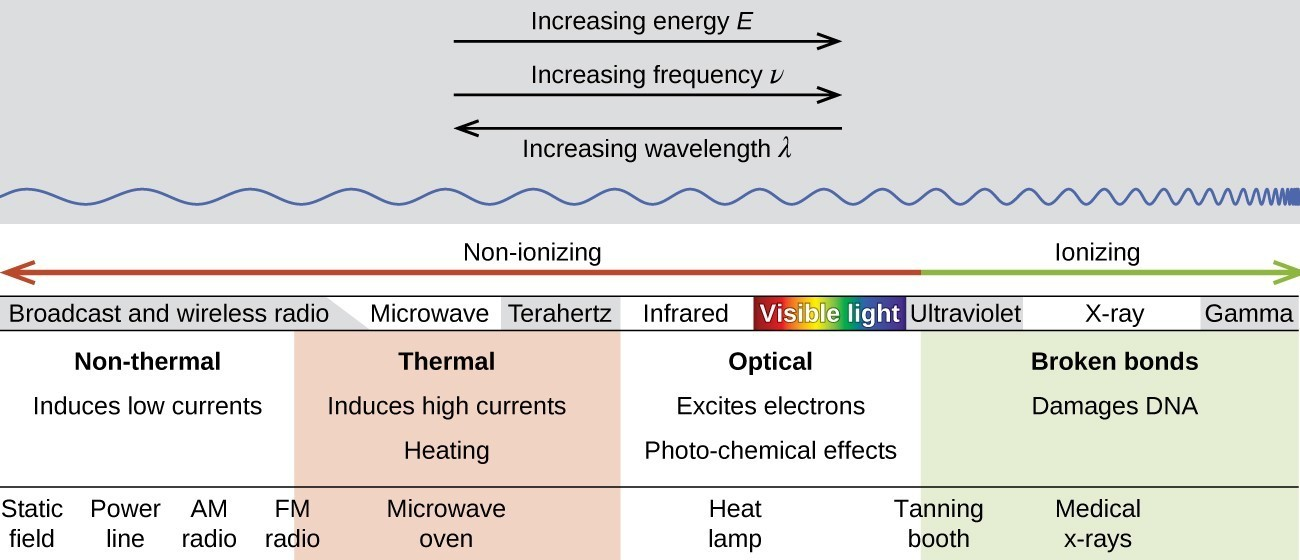 Biological Effects Of Radiation Chemistry For Majors